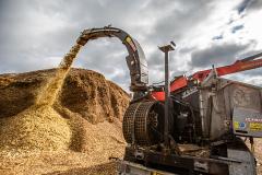 Biomass-Woodchip2