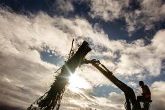 woodchipping
