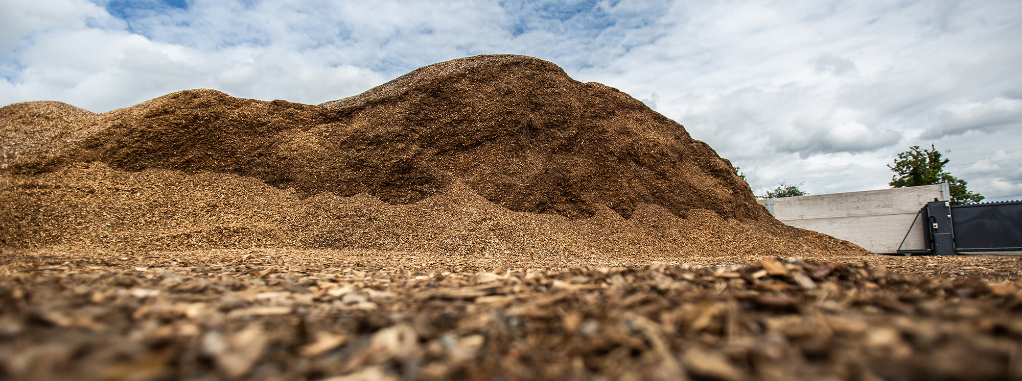 Woodchip landscaping